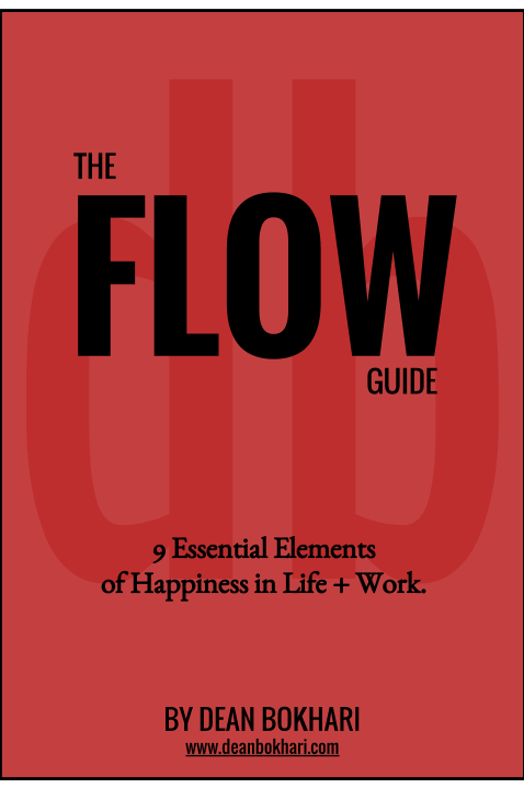 THE FLOW GUIDE